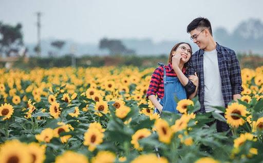 Ý nghĩa hoa hướng dương trong tình yêu